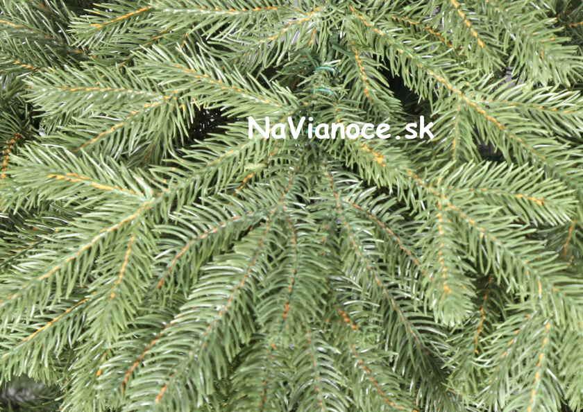 naturálne vianočné stromčeky