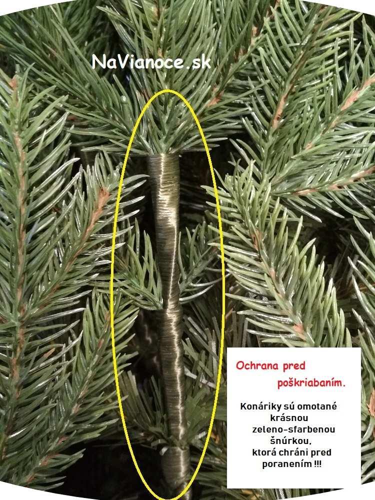 hustý vianočný stromček, starostlivosť