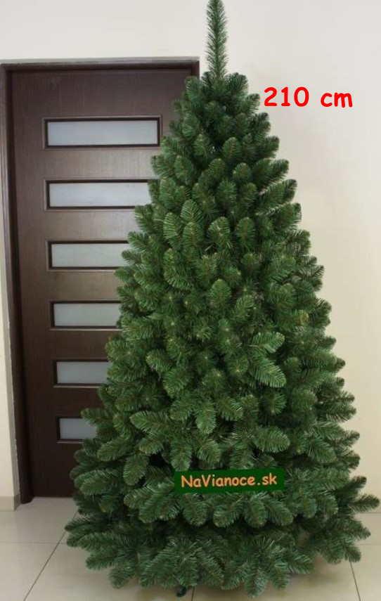 reálna fotka vianočného stromčeka 210 cm borovica klasik