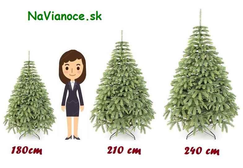 správny výber výšky vianočného stromčeka na Vianoce