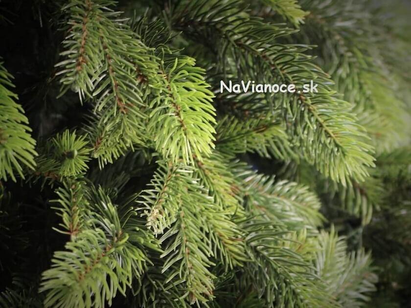 najkrajší vianočný stromček smrek 3d