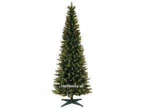 úzke vianočné stromčeky TUJE 3d