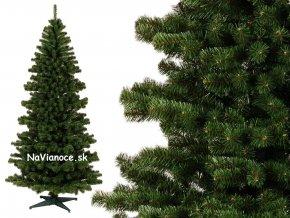 vianočný stromček smrek ideal